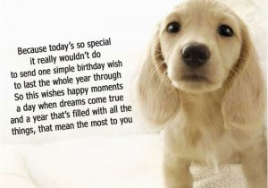 Happy Birthday Cards With Dogs Dog Quotes Quotesgram