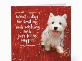 Happy Birthday Cards with Dogs Smiling Happy Dog Birthday Cards Hallmark Card Pictures