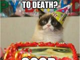 Happy Birthday Cat Quotes 25 Happy Birthday Funny Quotes Quotes Words Sayings