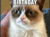 Happy Birthday Cat Quotes Happy Birthday Funny Grumpy Quotes Quotesgram