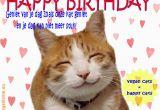 Happy Birthday Cat Quotes Happy Birthday Hairless Cat Quotes Litle Pups
