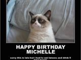 Happy Birthday Cat Quotes Happy Birthday Michelle Quotes Quotesgram