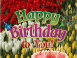 Happy Birthday Decorations for Adults Birthday Party Ideas for Adults Happy Birthday