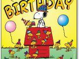 Happy Birthday Dentist Quotes Snoopy Birthday Hat Postcard Smartpractice Dental