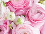 Happy Birthday Flowers for Her 60 Best Happy Birthday Flowers Images On Pinterest