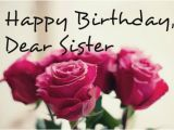 Happy Birthday Flowers for Sister Birthday Wishes for Sister Page 35