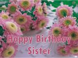 Happy Birthday Flowers for Sister Happy Birthday Wishes for Sister Quotes Messages Images