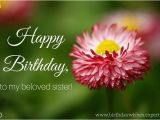 Happy Birthday Flowers for Sister Sisters are forever Birthday Wishes for Your Sister