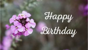Happy Birthday Flowers Graphics Floral Wishes Ecards Free Birthday Images with Flowers