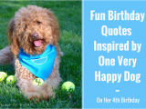 Happy Birthday for Dogs Quotes 7 Fun Birthday Quotes From A Very Happy Birthday Dog