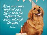 Happy Birthday for Dogs Quotes Dog Birthday Quotes 4 Happy Birthday World