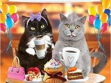 Happy Birthday From the Cat Card Cat Birthday Card Amazon Co Uk