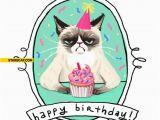 Happy Birthday From the Cat Card Grumpy Cat Happy Birthday Card Starecat Com