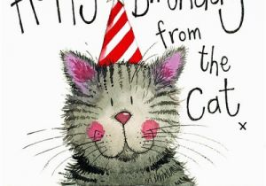 Happy Birthday From The Cat Card Themed