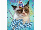 Happy Birthday From the Cat Card Happy Birthday Grumpy Cat Greeting Cards Zazzle