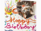 Happy Birthday From the Cat Card Happy Birthday Wishes with Cat Page 3