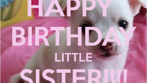 Happy Birthday Lil Sister Quotes Happy Birthday Little Sister Quotes Quotesgram