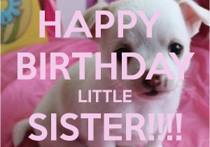 Happy Birthday Lil Sister Quotes Birthday Memes for Sister