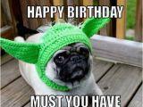 Happy Birthday Meme with Dogs Happy Birthday Memes Dog Wishesgreeting