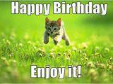 Happy Birthday Memes Cute Best Happy Birthday Cat Meme