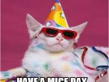 Happy Birthday Memes with Cats Happy Birthday Cat Memes Funny Funny Cute Angry Grumpy