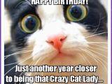 Happy Birthday Memes with Cats Happy Birthday Memes with Funny Cats Dogs and Cute Animals