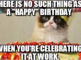 Happy Birthday Memes with Cats the December Birthday Struggle Bus