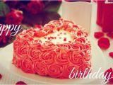 Happy Birthday Pooja Quotes Happy Birthday Images Hd Photos Pics with Wishes