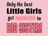 Happy Birthday Quotes for Big Brother From Sister Big Sister Quotes Happy Birthday Quotesgram