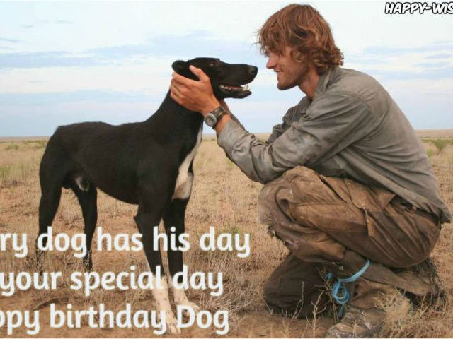 Download By SizeHandphone Tablet Desktop Original Size Back To Happy Birthday Quotes For Dogs