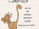 Happy Birthday Quotes to Brother From Sister 25 Best Ideas About Birthday Wishes for Brother On