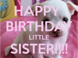 Happy Birthday Quotes to My Little Sister Happy Birthday Little Sister Quotes Quotesgram