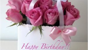 Happy Birthday Quotes with Flowers 5 Reasons why You Should Choose Flowers for Your