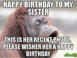 Happy Birthday Sister Sarcastic Quotes 20 Hilarious Birthday Memes for Your Sister Sayingimages Com