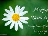 Happy Birthday to My Beautiful Wife Quotes 120 Birthday Wishes Your Wife Would Appreciate