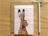 Hare Birthday Cards Recycled Hare Greeting Card by Stephanie Cole Design