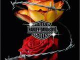 Harley Davidson Happy Birthday Cards 66 Best Images About Birthday On Pinterest Rock Stars