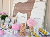 Horse themed Birthday Party Decorations 10 Rustic Kids Birthday Party Ideas Rustic Baby Chic