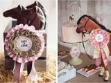 Horse themed Birthday Party Decorations Horse themed Birthday Party Activities Home Party Ideas