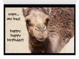 Hump Day Birthday Card Funny Camel Hump Day Birthday Card 2 Zazzle