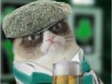 Irish Birthday Meme 25 Best Irish Dance Humor Ideas On Pinterest