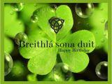 Irish Happy Birthday Meme Quot Irish Happy Birthday Quot by Casstevens On Polyvore soooo
