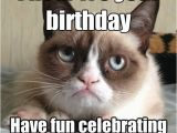 It S My Cat S Birthday Meme I Hear It 39 S Your Birthday Have Fun Celebrating while I