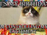 It S My Cat S Birthday Meme It 39 S My Birthday Grumpy Cat Birthday Meme On Memegen