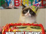 It S My Cat S Birthday Meme Quit Singing On My Cake Imgflip