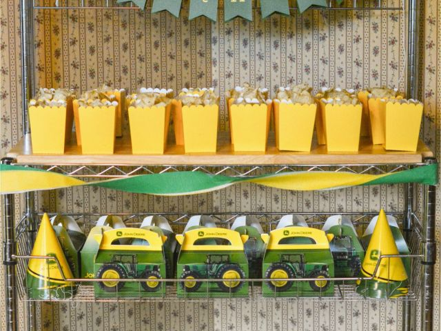 John Deere Birthday Decorations Party Ideas For