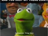 Kermit Birthday Memes 20 Kermit the Frog Memes that are Insanely Hilarious