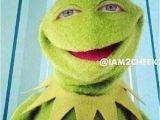 Kermit Birthday Memes 63 Best Comedy Kermit Memes Images On Pinterest
