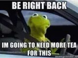 Kermit Birthday Memes the Best Of the 39 that 39 S None Of My Business 39 Kermit Meme