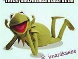 Kermit the Frog Birthday Meme 625 Best Images About Kermit 39 S Tea Party On Pinterest